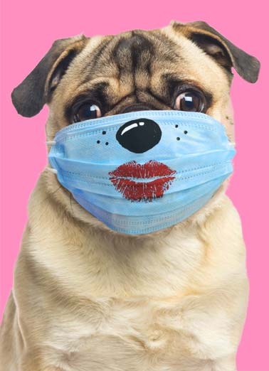 Pugs and Kisses VAL Funny Quarantine Card Valentine's Day A photo of a dog with a face mask that has a lipstick mark on it. | Pug Kiss dog happy Valentine's Day valentine face mask lipstick sending send red  Sending you Pugs and Kisses for a happy Valentine's Day