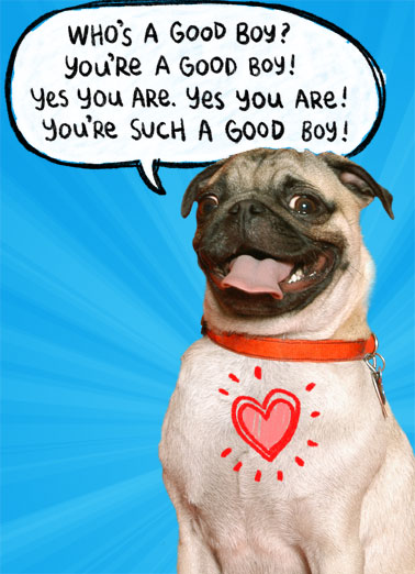 Pup Talk Funny Birthday Card Dogs A picture of a happy pug tell you that you are good. | happy birthday pug good boy pup talk heart cute dog animal smile Who's a good boy? You're a good boy! yes you are. yes you are! you're such a good boy!
