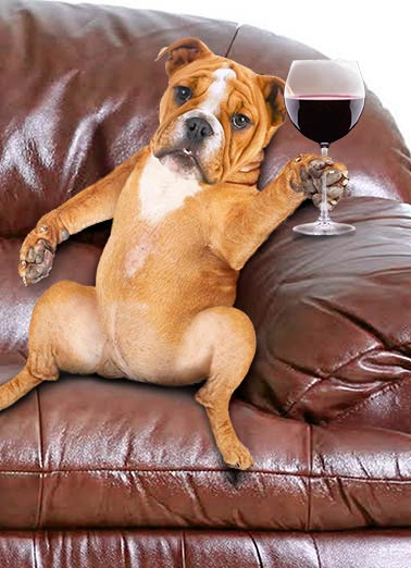 Need Some Wine Funny Dogs Card    Some days are more RUFF than others.