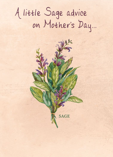 "Sage Advice MD Funny Mother's Day Card  A picture of sage with the words, ""A little sage advice on Mother's Day."" 