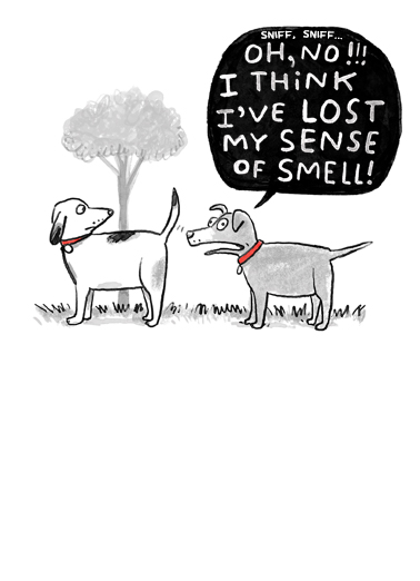 "Sense of Smell Funny Birthday Card Funny Send a wish with this funny ""Sense of Smell Dogs"" Birthday card or Ecard to put a smile on someone's face today."