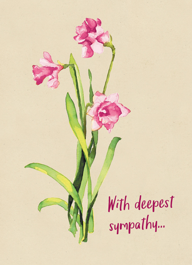 Sympathy Flowers Funny Flowers Card  Thinking  of  you,