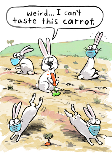 "Taste Carrot Funny Easter Card Cartoons Send a wish with this funny ""Can't Taste this Carrot"" Easter card or Ecard to put a smile on someone's face today."