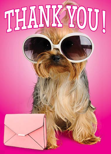 Thank You Pooch Funny 5x7 greeting Card  sunglasses purse dog cute fun thanks thank you fashion   That was TOTALLY FABULOUS of you!