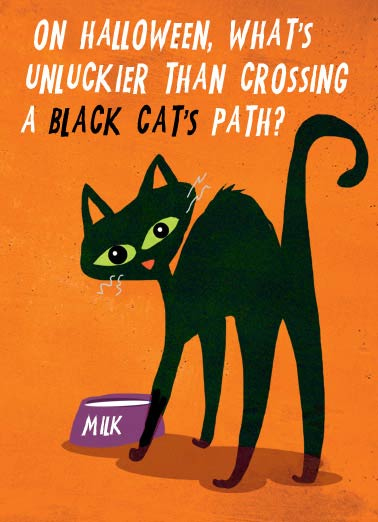 Funny Halloween   What's unluckier than crossing a black cat? | black, cat, humor, halloween, funny, halloween, cards,