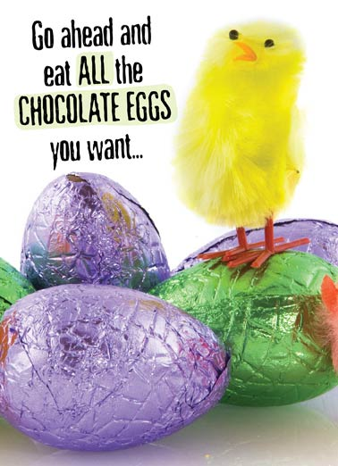 easter cards funny cards free postage included