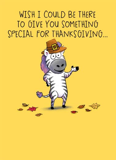 Zebra Thanksgiving Funny Thanksgiving  Cartoons An illustration of a zebra wearing a pilgrim hat saying that they want to give you something special for Thanksgiving. | Happy Thanksgiving zebra pilgrim leaf leaves fall feast hug eat something special hug from ...a big hug from me!